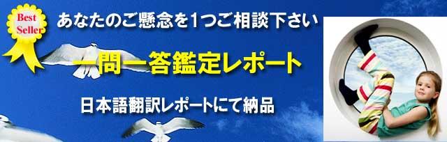 一問一答鑑定日本語版レポート【日本語翻訳レポートにて納品】