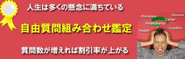 自由質問組み合わせ鑑定【最大5問】
