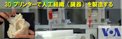 ■ 3D プリンターで人工組織(臓器)を製造する Manufacturing LIving Tissue by the 3D Printing