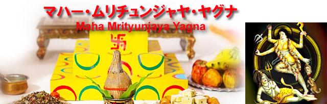 マハー・ムリチュンジャヤ・ヤグナ(Maha Mrityunjaya Yagna)無料お見積もり