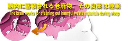 脳内に蓄積される老廃物、その良薬は睡眠 - The brain works for cleaning out harmful waste materials during sleep<br />
