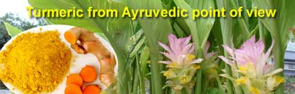 Turmeric from Ayruvedic point of view