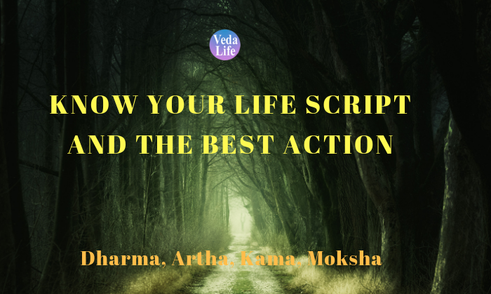 Know Your Life Script and the Best Action